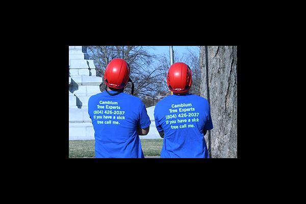 Two men contemplating mulching in Richmond VA